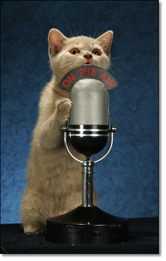A photograph of On the air